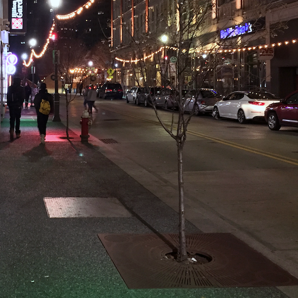 Forbes Avenue <br/>Holiday Lighting